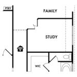 Optional Study