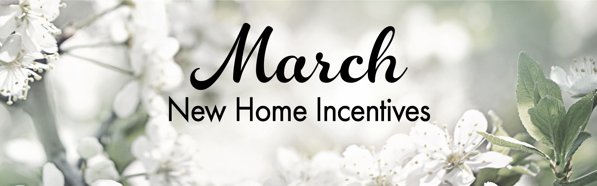 New Homes for Sale in Texas
